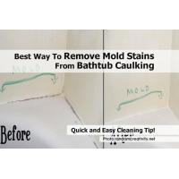 China how to get rid of mold in a bathroom on sale