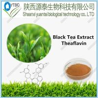 Buy cheap Black Tea Extract Theaflavin from Wholesalers