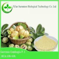 Buy cheap Weight Loss Garcinia Combogia Extract from Wholesalers