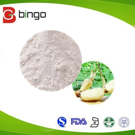 Quality Vegetable Powder for sale