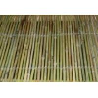 Buy cheap Screw Series Bamboo Fence with thread weaven from wholesalers