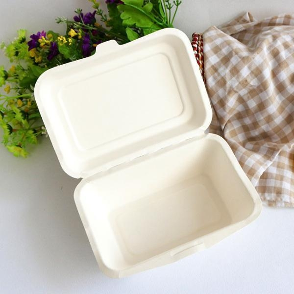 Quality 9 inch biodegradable sugarcane pulp takeout to-go food box clamshell for sale