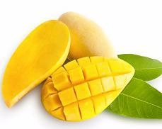 Quality Mango Pulp Totapuri Mango Pulp for sale